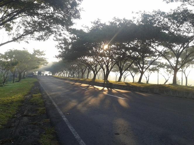 pemandangan perjalanan ke Padang Bai