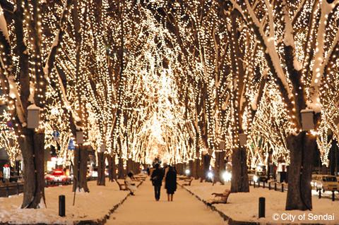 Beauty of Jozenji street in Cold Winter. Photo belongs to : http://article.japanican.com/en/articles/200911sendai_winter_event.html